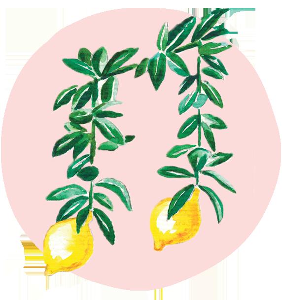 Logo für Elisa Musik 2019